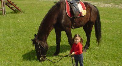 Dorka lóval